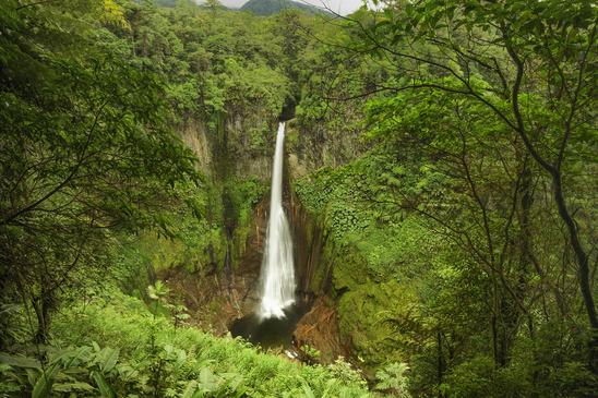 What is Ecotourism in New Zealand
